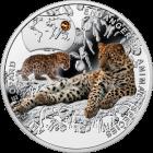Lampart amurski, 1 dolar, Seria: SOS dla Świata – Zagrożone Gatunki Zwierząt